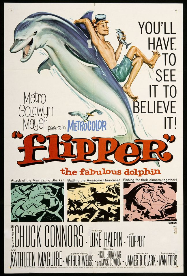 800px-Flipper_1963_movie_poster