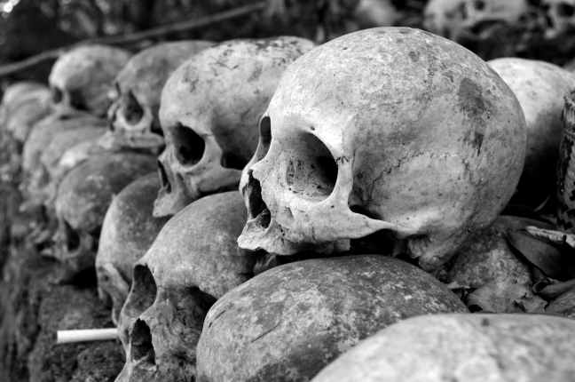 grey skulls piled on ground